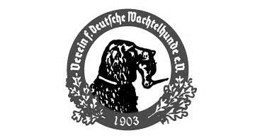 Jagd_Exklusiv_Wachtelhund